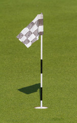 Green and Hole Flag