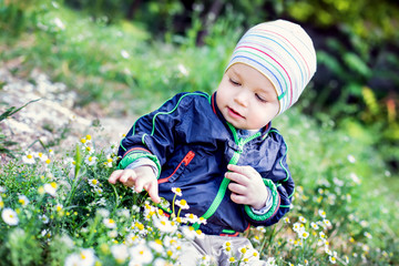 Cute toddler boy look at flowers