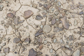 Texture of desert ground, Ladakh, India.