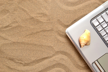 Laptop and shell on wood