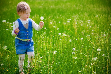 girl at the dandelion field