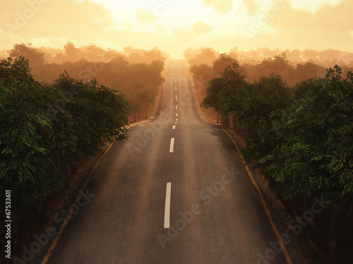 canvas print picture road through the forest