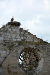 nido con dos cigüeñas en una iglesia en ruinas