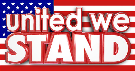 United We Stand American Flag USA Sticking Together Strong Pride