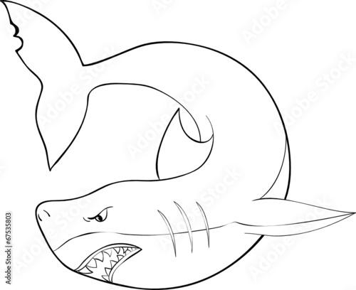 ausmalbilder unterwasserwelt hai - ausmalbilder