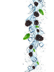 Fresh blackberries in water splash