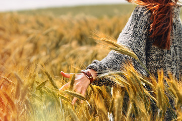 young woman hand in a wheat field as harvest concept