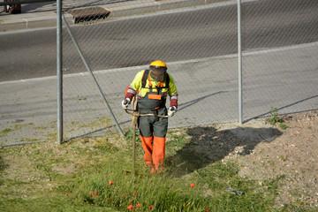 jardinero cortando la hierba de un parque