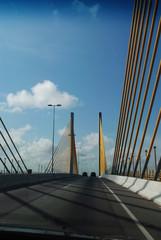 Ponte RGN