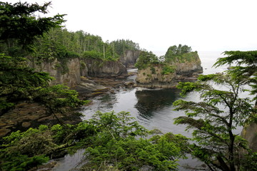 Coastal Cliffs in Washington State