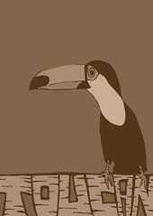 Vintage toucan