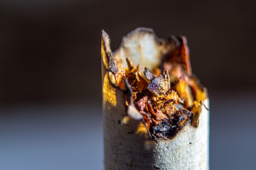 Closeup o unhealthy smoked cigarette