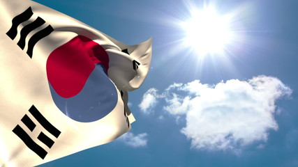 Korea republic national flag waving