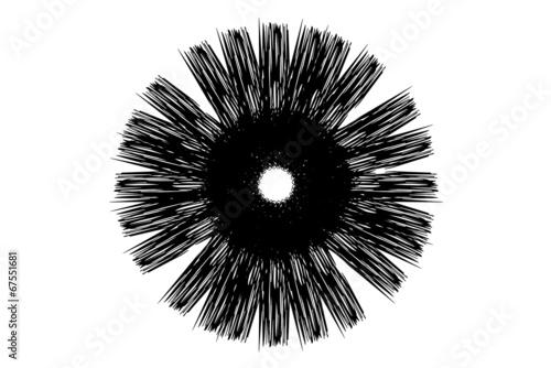 kreisförmiger Stern - 67551681