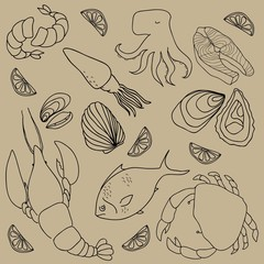 Set of hand drawn elements seafood. Retro vintage style seafood