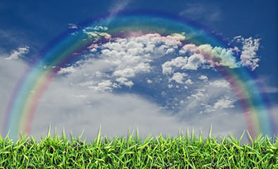 Green field, grass, blue sky and white clouds
