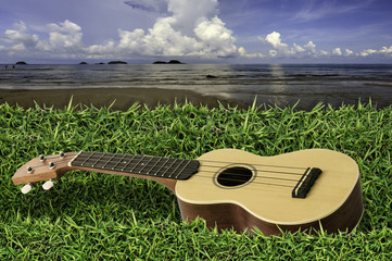 Ukulele on fresh green grass with blue sky and sea