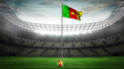 Cameroon national flag waving on flagpole