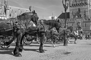 Bruges - Carriage on the Grote Markt and Belfort van Brugge