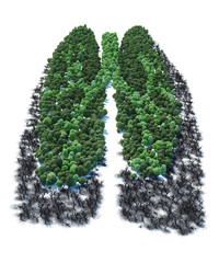 Tree with form of human lung patients ver 2