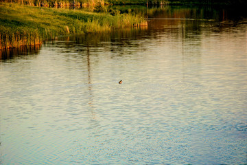 River Lake