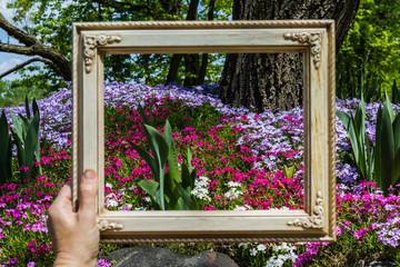 framing a garden
