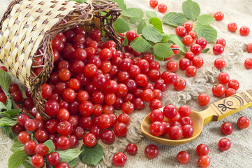 Pile of cherry with basket and spoon