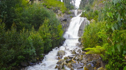 Steavenson Falls on the Steavenson River in Marysville, Victoria