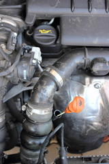 Engine oil dipstick in a car engine