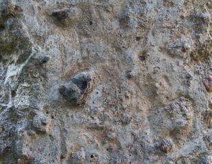Бетон с камнями