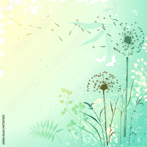 Fresh Dandelion Background