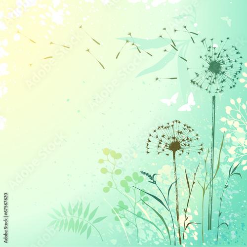 Foto op Canvas Vlinders in Grunge Fresh Dandelion Background