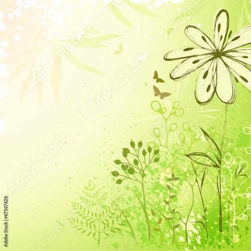 Keuken foto achterwand Vlinders in Grunge Fresh Green Floral Background