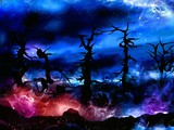 spooky magical forest with mysterious lights poster