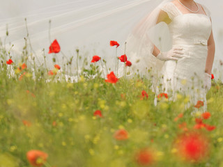 Bride in Poppy Field