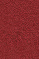 Artificial Eco Leather Cardinal Red Coarse Grunge Texture Sample