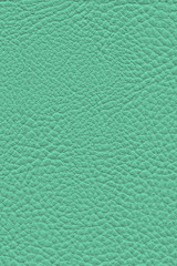 Artificial Eco Leather Texture Sample