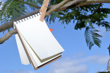 Book hanging from a tree