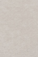 Artist's Linen Duck Coarse Canvas Single Primed Grunge Texture