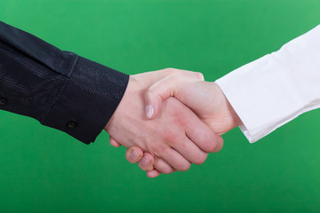 Handshake on green background