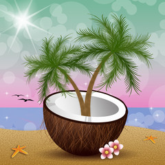 Coconut with palms on the beach