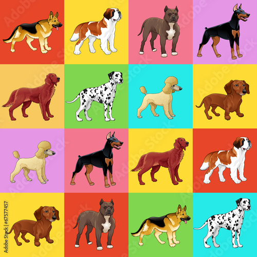 Set of dog with background.