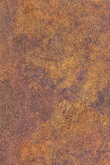 Old Cowhide Creasy Exfoliated Crumpled Grunge Texture