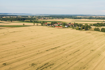 aerial view of harvest field