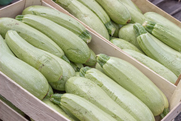 Farmers market marrows in a wooden crates