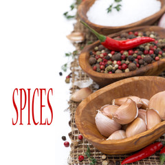 garlic, hot pepper, sea salt and spices in wooden bowl, isolated