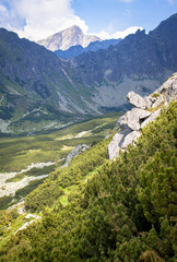 Nature in High Tatras, Slovakia