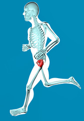 Uomo che cammina visto ai raggi x con dolore al bacino