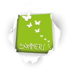 carta che si strappa con farfalle bianche
