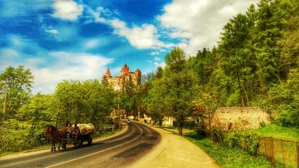 Castle bran, dracula, Transylvania romania,